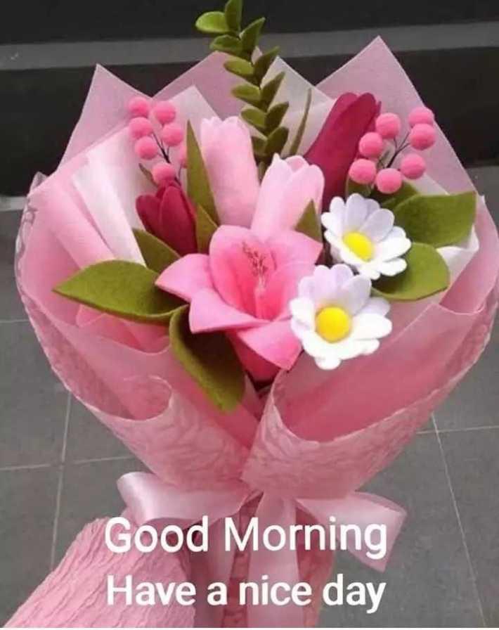 🌅ಶುಭೋದಯ - Good Morning Have a nice day - ShareChat