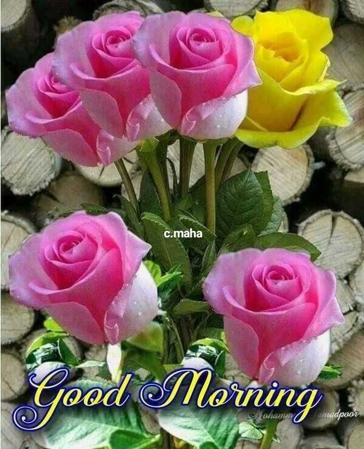 🌅ಶುಭೋದಯ - c . maha Good Morning n adpoor - ShareChat