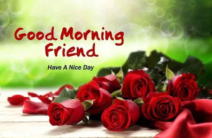 🌅ಶುಭೋದಯ - Good Morning Friend Have A Nice Day - ShareChat