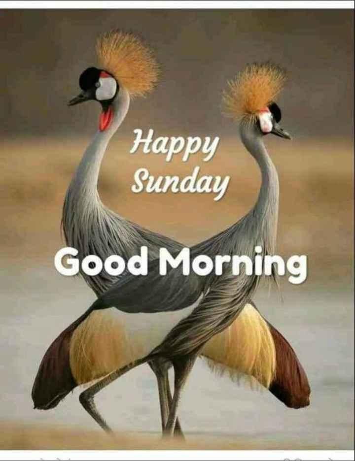 🌅ಶುಭೋದಯ - Happy Sunday Good Morning - ShareChat