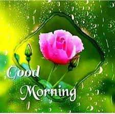 💝 ആശംസകള് - Cood Morning - ShareChat