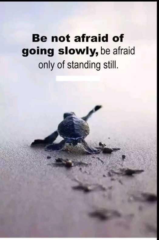 💭 എന്റെ ചിന്തകള് - Be not afraid of going slowly , be afraid only of standing still . - ShareChat