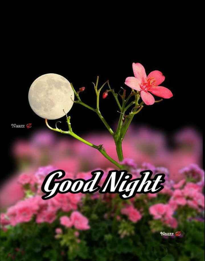 🌃 ഗുഡ് നൈറ്റ് - Naazz Good Night Naazz - ShareChat