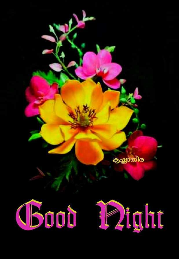 🌃 ഗുഡ് നൈറ്റ് - കൃഷ്ണാതിര Good Night - ShareChat