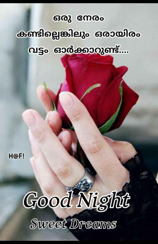 🌃 ഗുഡ് നൈറ്റ് - ഒരു നേരം കണ്ടില്ലെങ്കിലും ഒരായിരം വട്ടം ഓർക്കാറുണ്ട് . . . H @ F ! Good Night Sweet Dreams - ShareChat