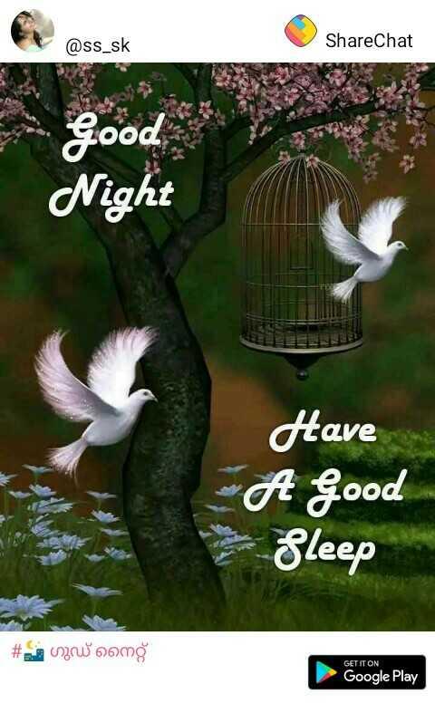 🌃 ഗുഡ് നൈറ്റ് - @ ss _ sk ShareChat Good Night Have A Good Sleep # wow comg GET IT ON Google Play - ShareChat