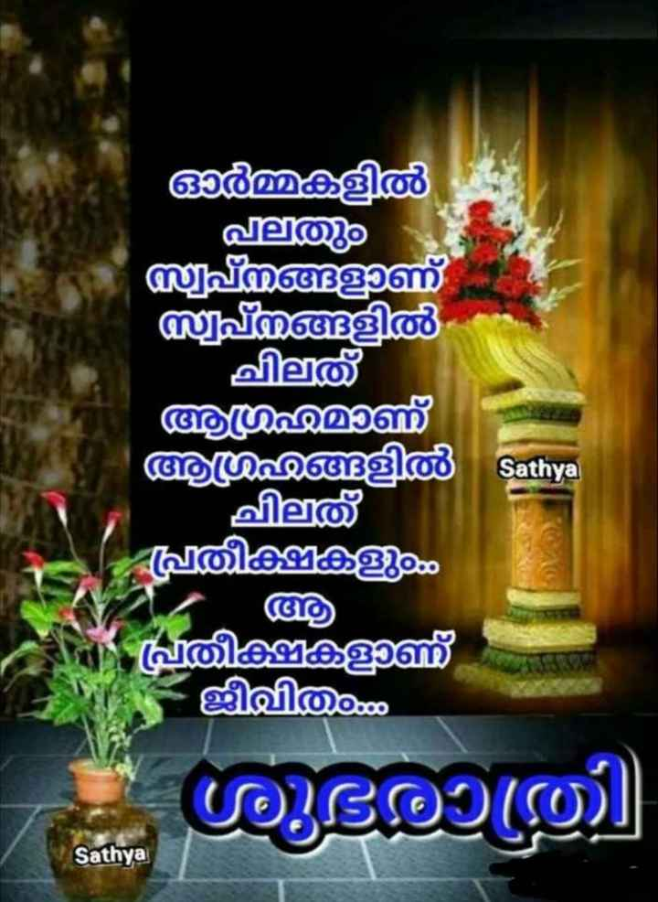 🌃 ഗുഡ് നൈറ്റ് - ർമ്മകളിൽ ഫ ്വപ്നങ്ങളുണ് സ്വപ്നങ്ങളിൽ ചിത് ആ മണ് ആഗ്രഹങ്ങളിൽ ചിലത് പ്രതീക്ഷകളു Sathya പ്രതീക്ഷ കണ് ജീവിത ശുഭരാത്രി Sathya - ShareChat