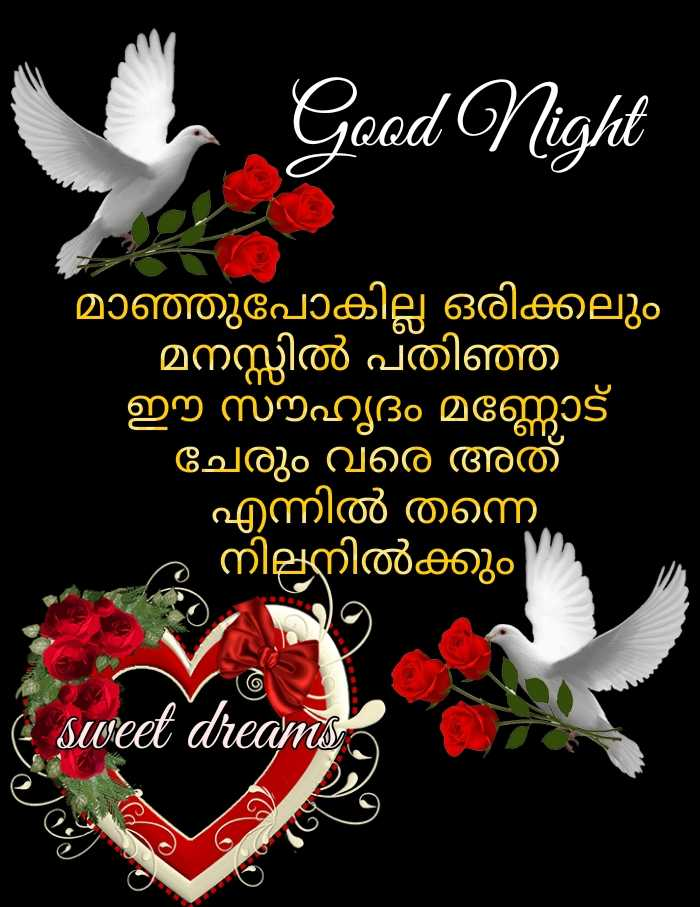 🌃 ഗുഡ് നൈറ്റ് - Good Night ' മാഞ്ഞുപോകില്ല ഒരിക്കലും ' മനസ്സിൽ പതിഞ്ഞ ഈ സൗഹൃദം മണ്ണോട് ചേരും വരെ അത് ' എന്നിൽ തന്നെ . ' നിലനിൽക്കും E sweet dreams - ShareChat