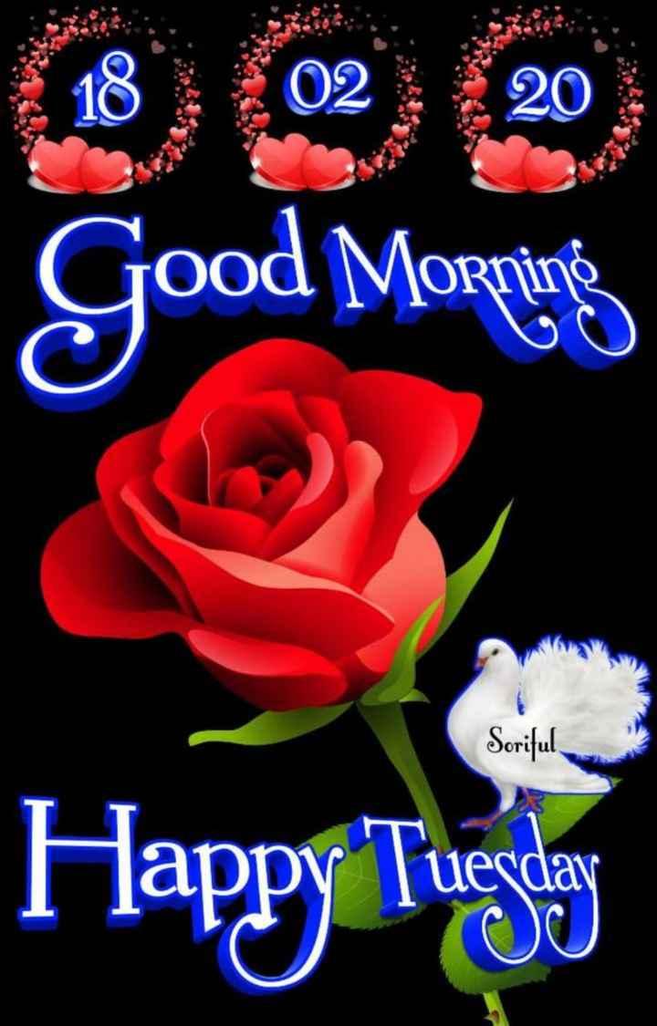 🌞 ഗുഡ് മോണിംഗ് - Good Morning Soriful Happy Tuesday - ShareChat