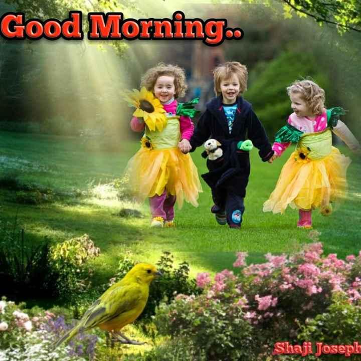 🌞 ഗുഡ് മോണിംഗ് - Good Morning . Shaji Joseph - ShareChat