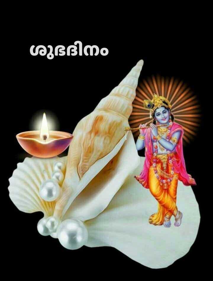 🌞 ഗുഡ് മോണിംഗ് - ശുഭദിനം - ShareChat