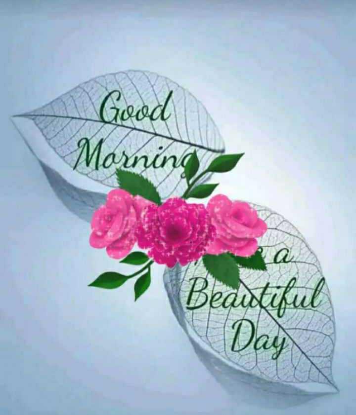 🌞 ഗുഡ് മോണിംഗ് - Good Morning Beautiful Day - ShareChat