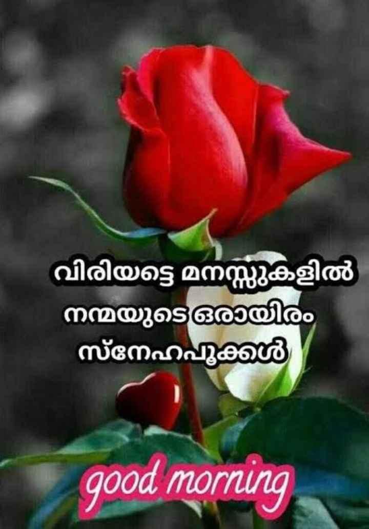 🌞 ഗുഡ് മോണിംഗ് - വിരിയട്ടെ മനസ്സുകളിൽ നന്മയുടെ ഒരായിരം സ്നേഹപൂക്കൾ good morning - ShareChat