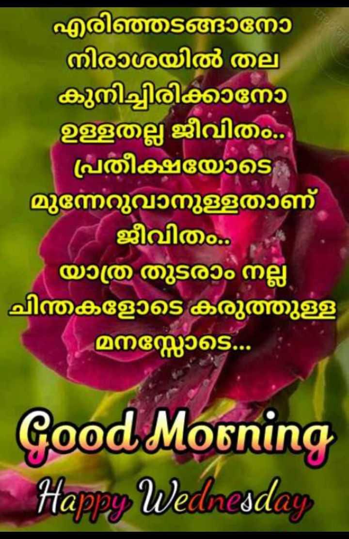 🌞 ഗുഡ് മോണിംഗ് - എരിഞ്ഞടങ്ങാനോ ' നിരാശയിൽ തല കുനിച്ചിരിക്കാനോ ഉള്ളതല്ല ജീവിതം . ' | പ്രതീക്ഷയോടെ മുന്നേറുവാനുള്ളതാണ് ജീവിതം . ' യാത്ര തുടരാം നല്ല - ചിന്തകളോടെ കരുത്തുള്ള മനസ്സോടെ . . . Good Morning Happy Wednesday - ShareChat