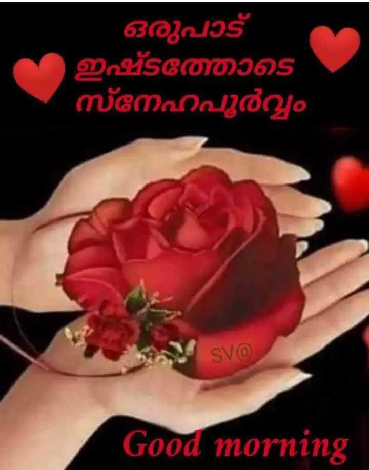 🌞 ഗുഡ് മോണിംഗ് - ഒരുപാട് ഇഷ്ടത്തോടെ നേഹപൂർവ്വം SVരി Good morning - ShareChat