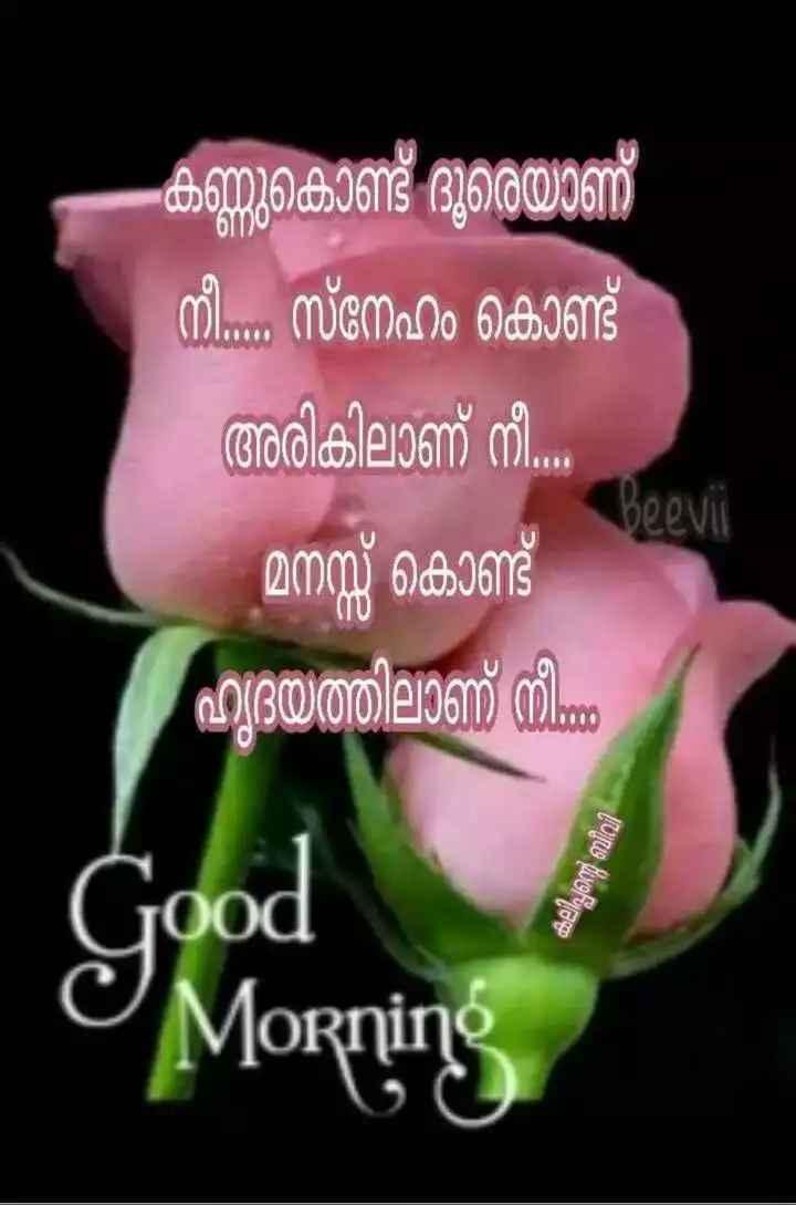 🌞 ഗുഡ് മോണിംഗ് - കണ്ണുകൊണ്ട് ദുരെയാണ് നീ . . സ്നേഹം കൊണ്ട് അരികിലാണ് നീ . മനസ്സ് കൊണ്ട് ഹൃദയത്തിലാണ് നിന്ന് beevii Good കലിപ്പന്റെ ബീവി Morning - ShareChat