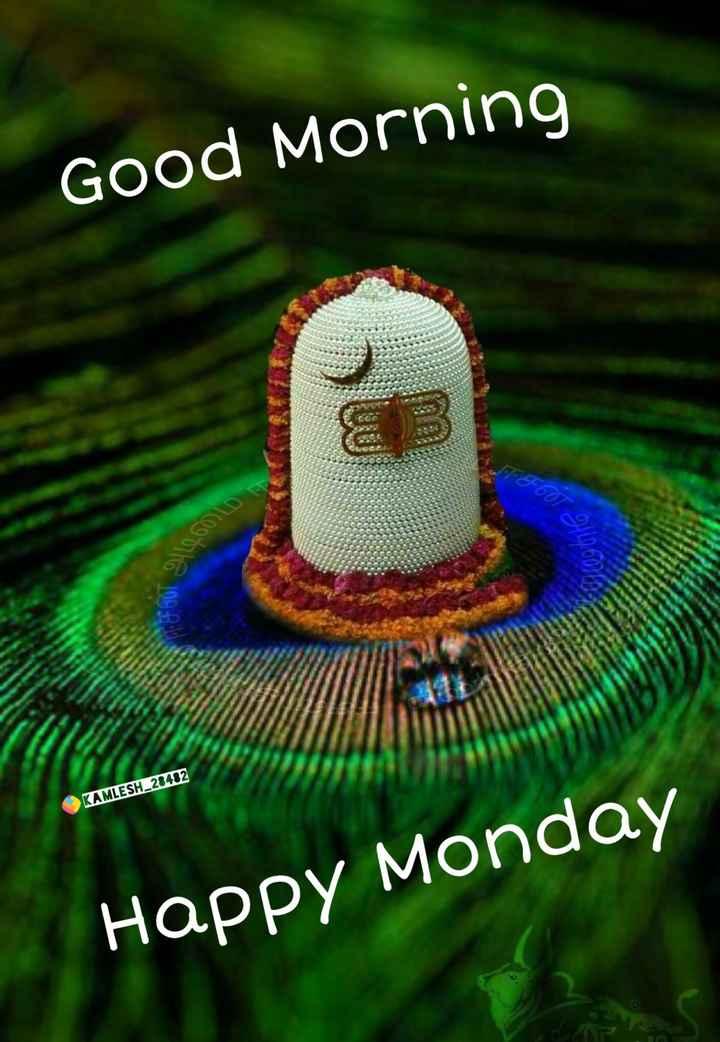 🌞 ഗുഡ് മോണിംഗ് - Good Morning F607 9 11 . 26000 KAMLESH _ 28482 Happy Monday - ShareChat