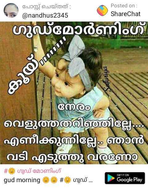 🌞 ഗുഡ് മോണിംഗ് - പോസ്റ്റ് ചെയ്തത് @ nandhus2345 Posted on : ShareChat - ഗുഡ് മോർണിംഗ് 20DDDDITI ниша IVITT | | നേരം വെളുത്തിട്ടില്ലേ . എണീക്കുന്നില്ലേ . . ഞാൻ വടി എടുത്തു വരണോ # ഗുഡ് മോണിംഗ് morning : # ഗുഡ് . . . GET IT ON Google Play - ShareChat