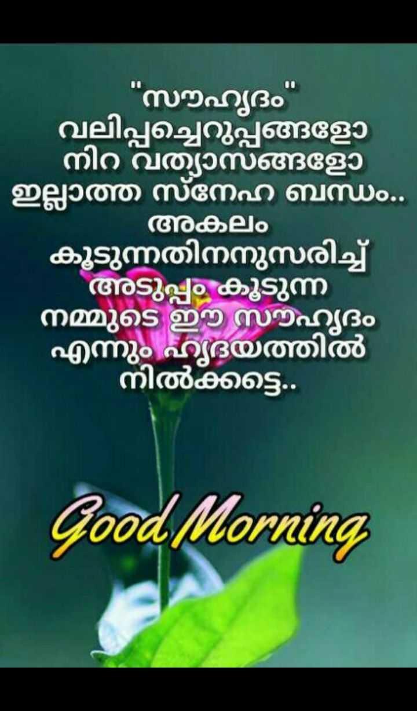 🌞 ഗുഡ് മോണിംഗ് - - സൗഹൃദം വലിപ്പച്ചെറുപ്പങ്ങളോ ' നിറ വ്യത്യാസങ്ങളോ ' ഇല്ലാത്ത സ്നേഹ ബന്ധം . . അകലം കൂടുന്നതിനനുസരിച്ച് ' അടുപ്പം കൂടുന്ന നമ്മുടെ ഈ സൗഹൃദം എന്നും ഹൃദയത്തിൽ ' നിൽക്കട്ടെ . . Good Morning - ShareChat