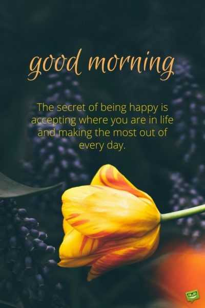 🌞 ഗുഡ് മോണിംഗ് - good morning The secret of being happy is accepting where you are in life and making the most out of every day . - ShareChat