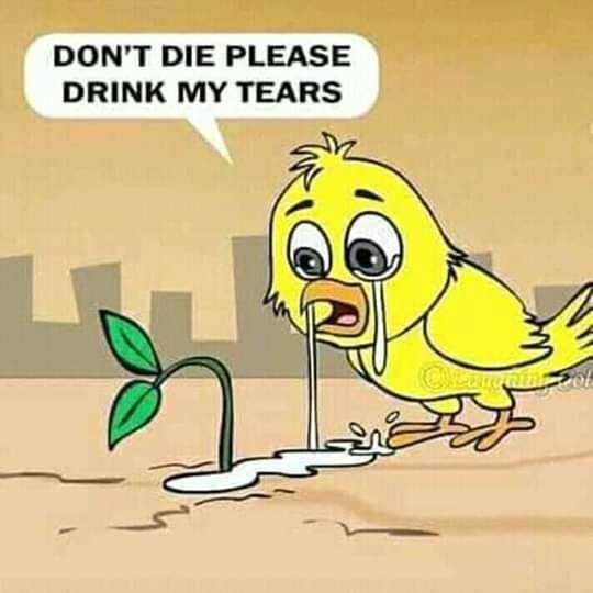 പ്രകൄതി - DON ' T DIE PLEASE DRINK MY TEARS - ShareChat