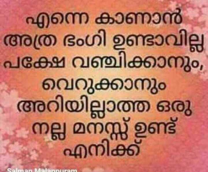 😞 വിരഹം - എന്നെ കാണാൻ അത്ര ഭംഗി ഉണ്ടാവില്ല - പക്ഷേ വഞ്ചിക്കാനും , വെറുക്കാനും - അറിയില്ലാത്ത ഒരു നല്ല മനസ്സ് ഉണ്ട് എനിക്ക് Salman Malanpuram - ShareChat