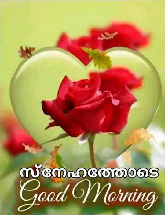 💑 സ്നേഹം - സ്തനാടെ Good Morning - ShareChat