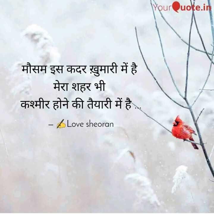 ✍️अल्फ़ाज़✍️ - YourQuote . in मौसम इस कदर ख़ुमारी में है मेरा शहर भी कश्मीर होने की तैयारी में है . . . - Love sheoran - ShareChat