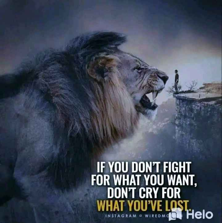 ✍️  Motivatinal Quotes - IF YOU DON ' T FIGHT FOR WHAT YOU WANT , DON ' T CRY FOR WHAT YOU ' VE LOST . DIINSTAGRAM O WIREDMG - ShareChat