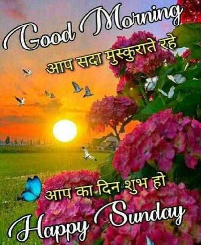 ✨शुभ रविवार - ( Good Morning आप सदा मुस्कुराते रहे आप का दिन शुभ हो Happy Sunday - ShareChat