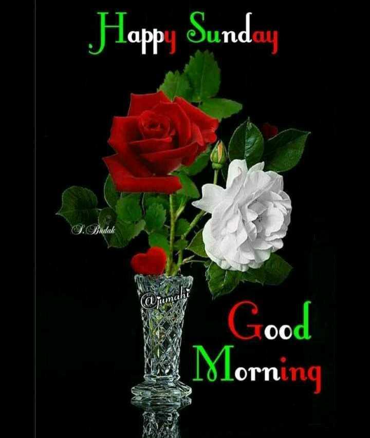 ✨शुभ रविवार - Happy Sunday Dindak . Good Morning - ShareChat