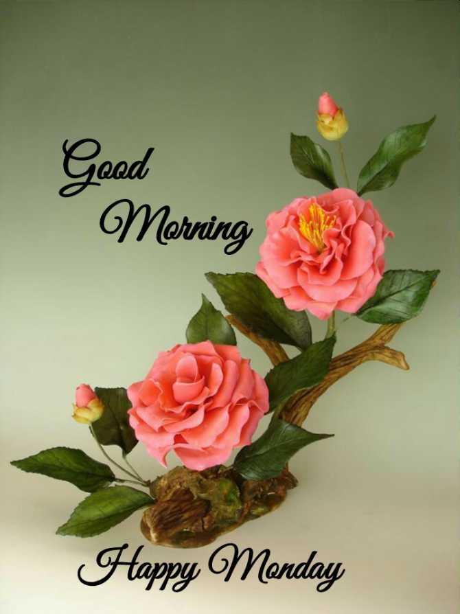 ✨सोमवार स्पेशल - Good Merring Happy Monday - ShareChat