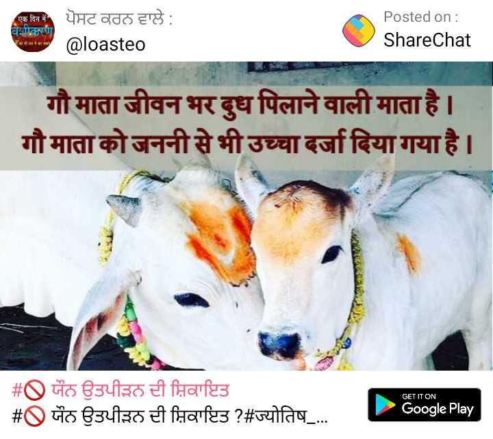 ✨ਮੈਂ ਹਾਂ Sharechat Captain ✨ - एक दिन में विशीकरण मट वठठ हाप्ले : @ loasteo Posted on : ShareChat को भी करतो गौ माता जीवन भर दुध पिलाने वाली माता है । गौ माता कोजननी से भी उच्चा दर्जा दिया गया है । GET IT ON # # Dठ उपीइठ टी मिवाप्टिउ Dठ Bउथीइठ टी सिवाप्टिउ ? # ज्योतिष _ . . . Google Play - ShareChat