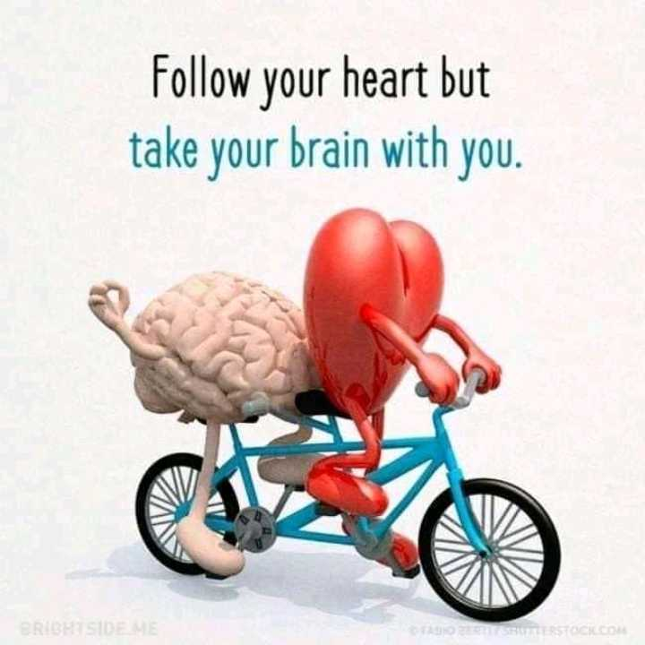 ❤️Love গুরু 💘 - Follow your heart but take your brain with you . BRIGHTSIDE ME FABIO ZE TERSTOCK . COM - ShareChat