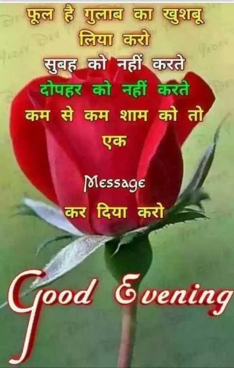 ❤ Miss you😔 - व फूल है गुलाब का खुशबू लिया करो सुबह को नहीं करते दोपहर को नहीं करते कम से कम शाम को तो एक Message कर दिया करो Good Evening - ShareChat