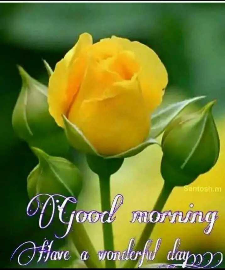 ☀️गुड मॉर्निंग☀️ - Santosh . m V good morning Oftave a wonderful days - ShareChat