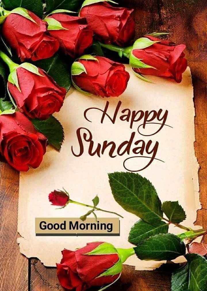 ☀️गुड मॉर्निंग☀️ - Happy Sunday Good Morning - ShareChat
