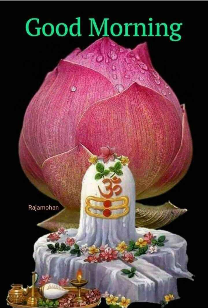 ☀️गुड मॉर्निंग☀️ - Good Morning Rajamohan - ShareChat
