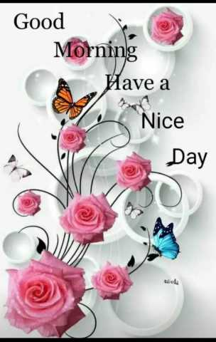 ☀️गुड मॉर्निंग☀️ - Good Morning A Have a Nice Day - ShareChat