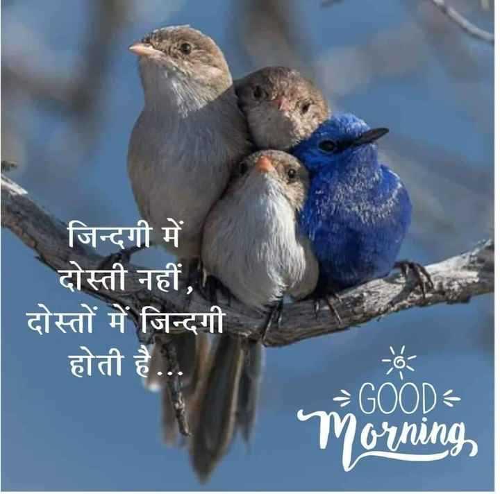 ☀️गुड मॉर्निंग☀️ - जिन्दगी में दोस्ती नहीं , दोस्तों में जिन्दगी होती है . . . = GOOD Morning - ShareChat