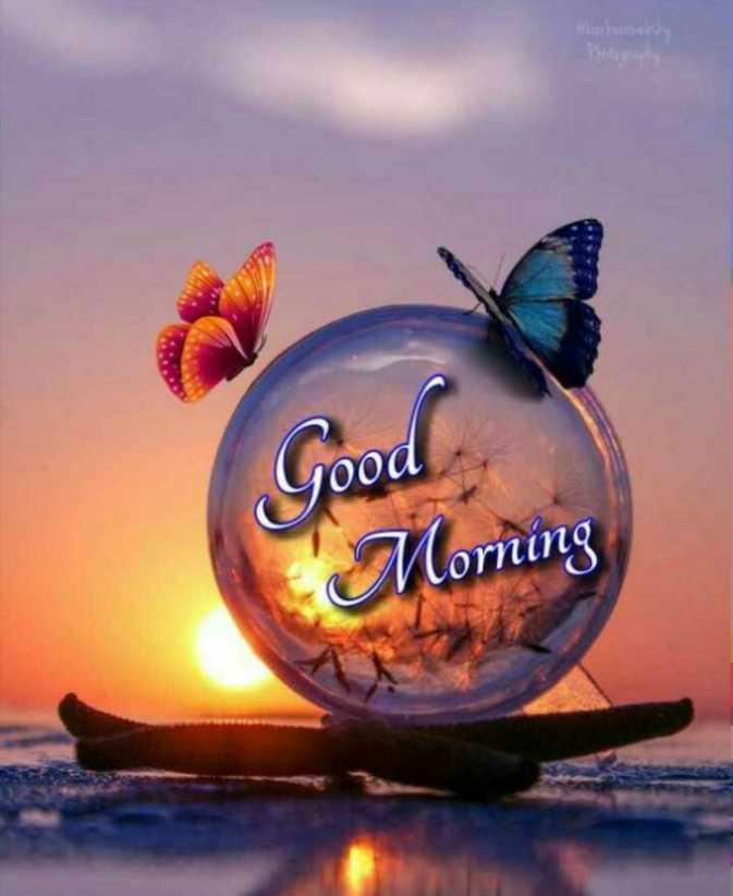☀️गुड मॉर्निंग☀️ - Good ' Morning - ShareChat