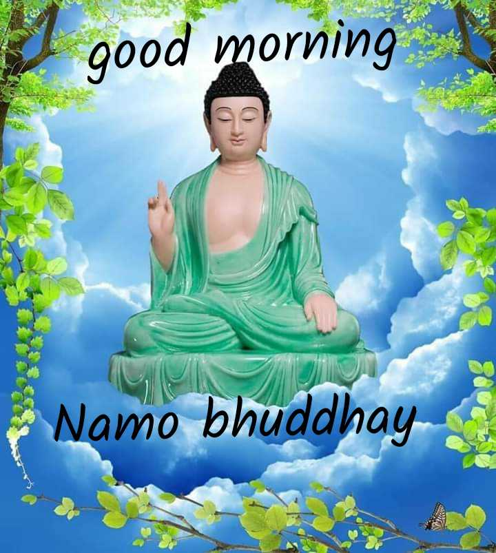 ☸️जय भीम - l good morning Namo bhuddhay - ShareChat