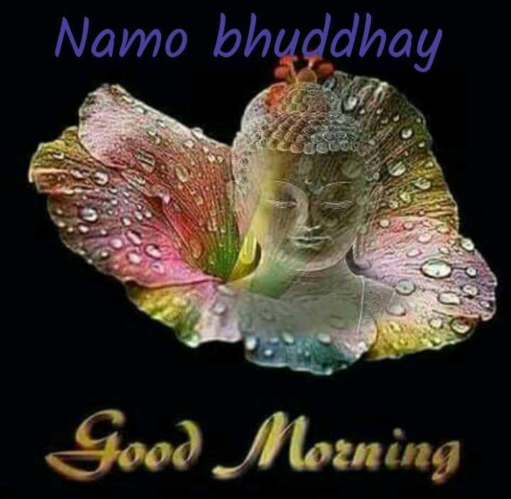 ☸️जय भीम - Namo bhuddhay Good Morning - ShareChat