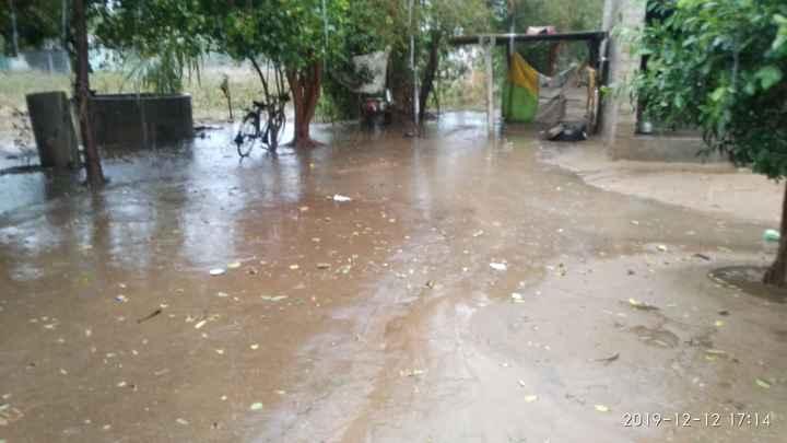 ⛈️ કમોસમી વરસાદ - | 2017 - 12 - 12 17 : 14 - ShareChat