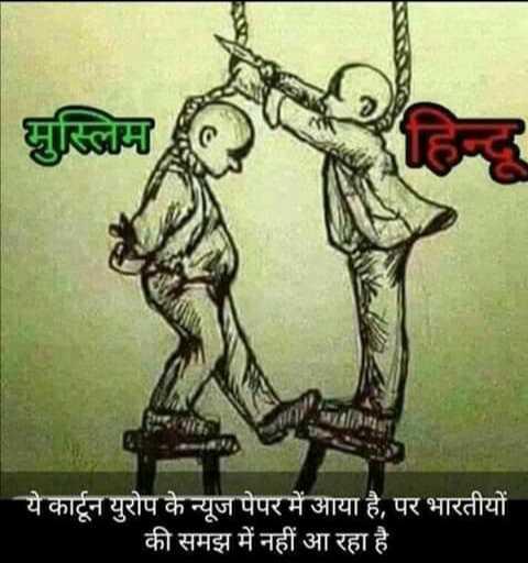 🗳️ દિલ્હી ચૂંટણી પરિણામ - मुस्लिम । ये कार्टून युरोप के न्यूज पेपर में आया है , पर भारतीयों की समझ में नहीं आ रहा है - ShareChat