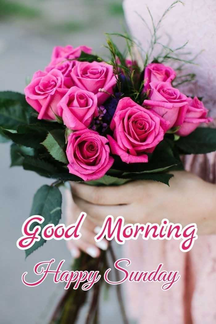 ☀️good morning☀️ - Good Morning Happy Sunday - ShareChat