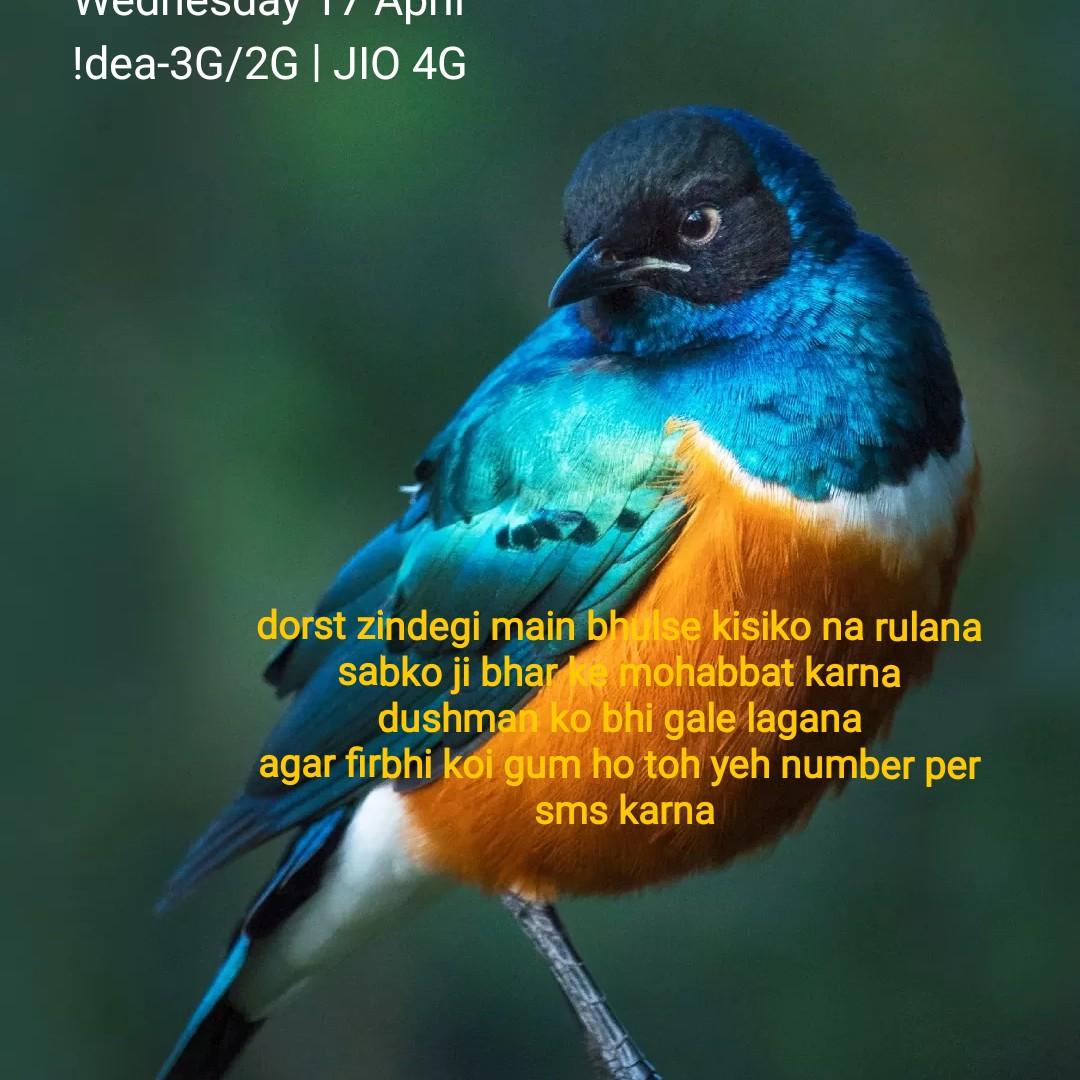 💭 প্ৰেৰণাদায়ক উক্তি - weunesudy 17 API ! dea - 3G / 2G JIO 4G dorst zindegi main bhulse kisiko na rulana sabko ji bhar ke mohabbat karna dushman ko bhi gale lagana agar firbhi koi gum ho toh yeh number per sms karna - ShareChat