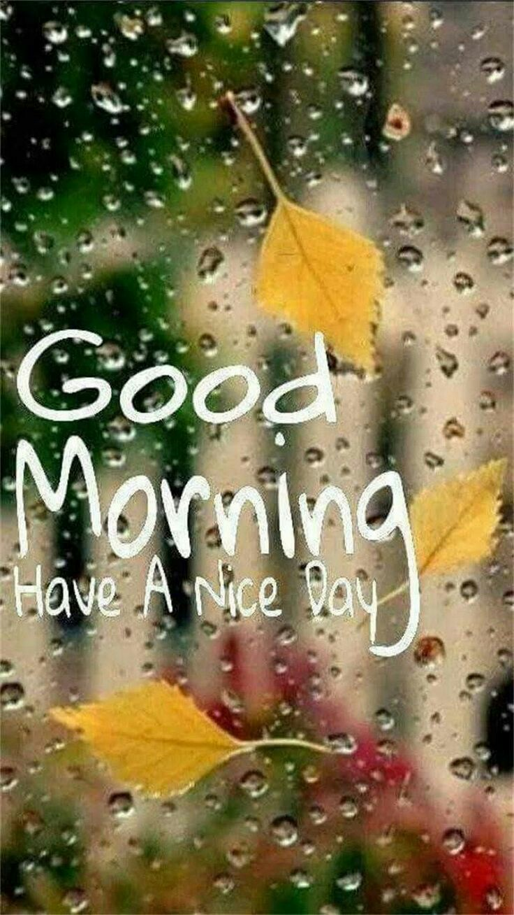🌞Good Morning🌞 - GOOG Have A Nice Day - ShareChat