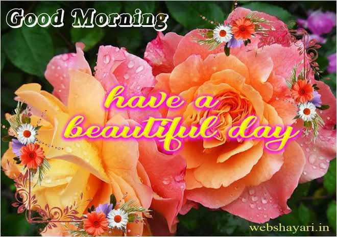🥳2020🥳 2 ओर दिन बाकी - Good Morning have a o beautye dai webshayari . in - ShareChat