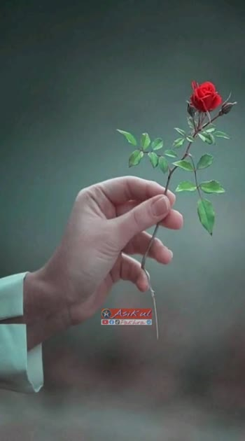 🎼 ভিডিও গান - ShareChat